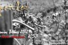 Apostle Two Gone, Next Apostle in the Wings, 12 Apostles Chenin Blanc 2012 Ready!