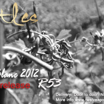 Apostle Two Gone, Next Apostle in the Wings, 12 Apostles Chenin Blanc 2012 Ready!